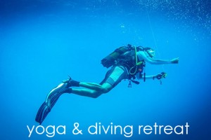 yoga diving retreat